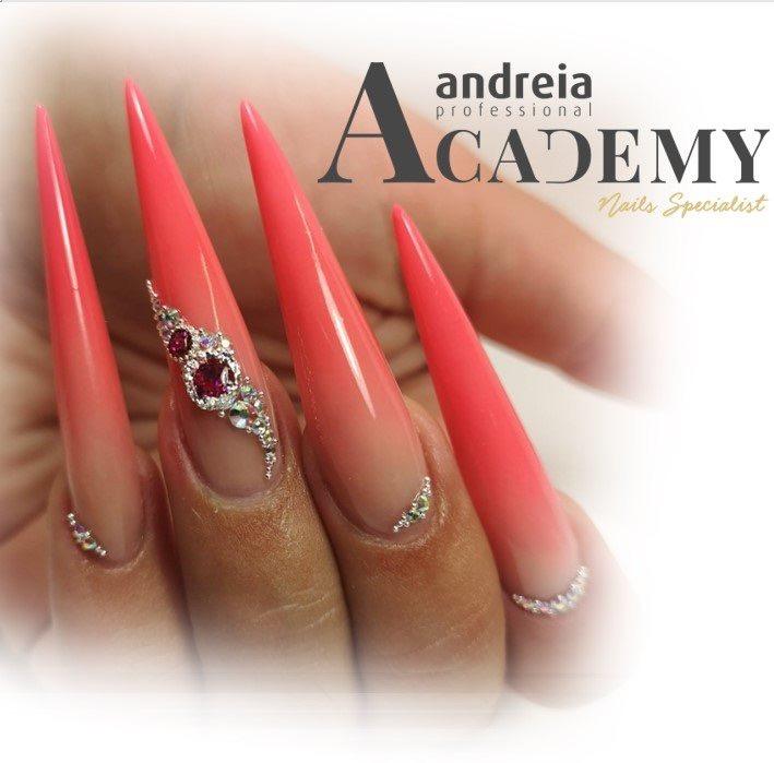 Andreia Professional Academy